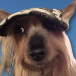 Koiran Lippalakki Camo Green | Häikäisysuoja Koiralle | Aurinkosuoja Pikkukaverille