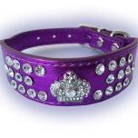 Koiran Kaulapanta | Kissan Kaulapanta | Satuprinsessa Purple | Edestä Leveämpi Panta