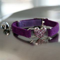 Kissatarvikkeet   Kissan kaulapanta Purple Heart   Pehmeä samettimainen panta, koristeena kaunis timanttisydän