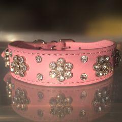 Koiran Kaulapanta Timanttikukka Pink | Edestä Leveämpi Panta