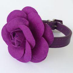 Kaulapanta Koiralle tai Kissalle | Purple Rose | Ruusukoristeinen Purple Panta