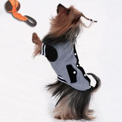 Koiran Vaatteet, Sporttinen Takki Koiralle, Koripallotakki, pitkähihainen takki, DiivaDog